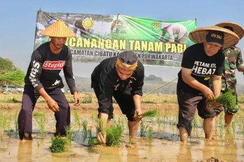 Sejak 2018 Purwakarta sudah lakukan langkah penyelamatan lahan pertanian