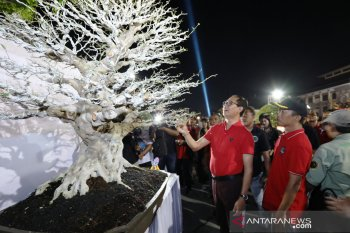 "500 peserta ikuti Kontes Bonsai ""Giri Wana Cup"""