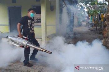 Dinkes: Lima warga Pekanbaru meninggal akibat DBD