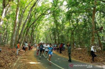 500 pelari ikuti Alas Purwo Geopark Green Run di Banyuwangi