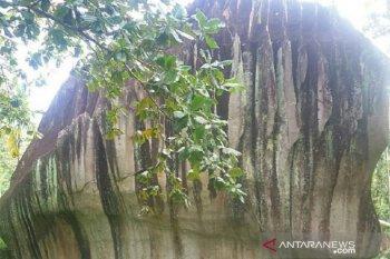 Lokasi wisata Batu Belimbing diperkenalkan jadi tujuan wisata di Kota Singkawang