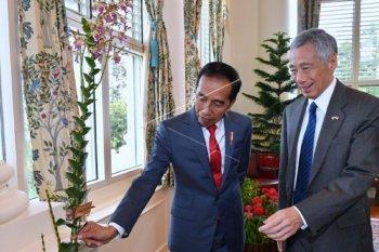 Cuitan @jokowi tunjukkan keakraban dengan negara serumpun