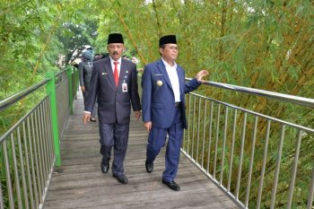 Gubernur: penataan RTH upaya meningkatkan kualitas lingkungan