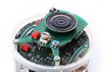 Mahasiswa IPB teliti robot pendeteksi korban bencana alam
