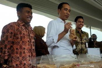 Presiden Jokowi arahkan peserta Mekaar PNM agar manfaatkan modal