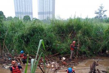 Asik berenang, bocah 12 tahun hanyut di Kali angke