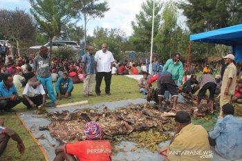Kepada pendatang, Pemkab Jayawijaya dorong denda adat berlaku