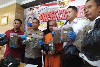 Polresta Denpasar tangkap kurir bawa ganja 7,6 kilogram