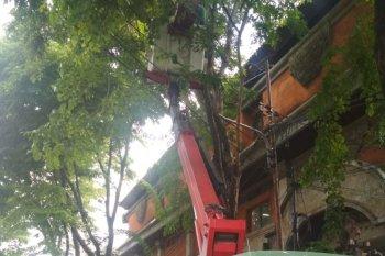 DLHK dan DPUPR Denpasar buat penataan antisipasi musim hujan