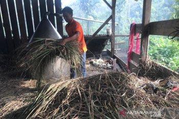 Petani keluhkan harga minyak serai wangi turun jadi Rp150 ribu/kg