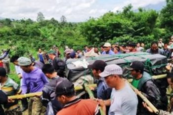 Harimau sumatera ditranslokasi ke Lampung perlu diobservasi