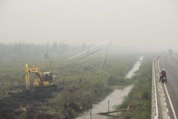 Musi Banyuasin dapat dana BNPB untuk bangun kanal lahan rawan karhutla