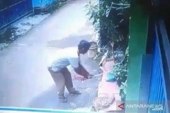 Aktivis pelindung satwa laporkan kasus pemukul kucing hingga tewas ke polisi