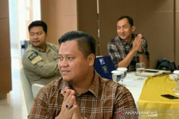Miniatur Kerajaan Sriwijaya akan dibangun di Banyuasin