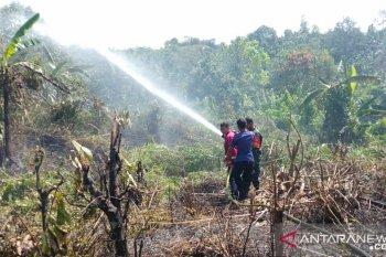 Karhutla di Pulau Sebatik tewaskan seorang petani