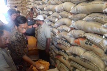 Stok beras Bulog Ternate 4.600 Ton