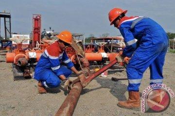 Kebutuhan energi industri 2025 didominasi gas alam