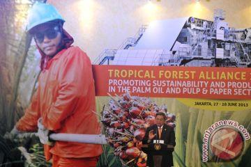 Aliansi Hutan Tropis Internasional