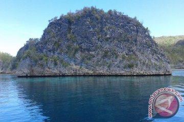 Pulau Pianemo Raja Ampat