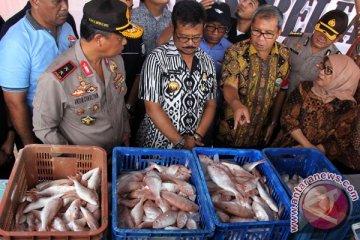 Penangkapan Tiga Ton Ikan Berformalin