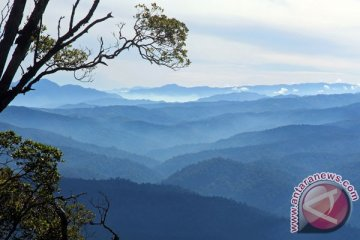 Kawasan Ekositem Leuser Aceh