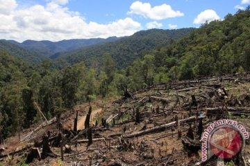 Kerusakan Kawasan Ekosistem Leuser