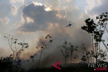 Kebakaran Lahan Di Pulau Semambu