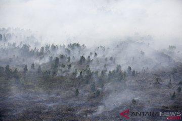 Kebakaran Lahan Indralaya Utara