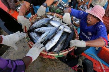Potensi Perikanan Laut Nusantara