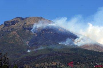 Kebakaran Hutan Gunung Sindoro