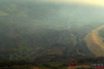 Kebakaran Hutan dan Lahan Gunung Ciremai