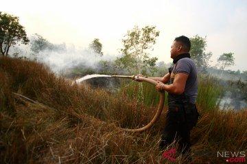 Kebakaran Lahan Gambut di Kalimantan Selatan