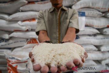 Stok Beras Indonesia