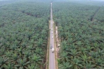 Jalur alternatif mudik lintas barat Jambi
