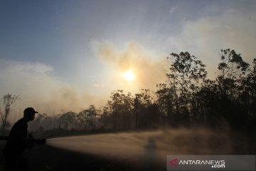Kebakaran lahan meluas di Aceh Barat