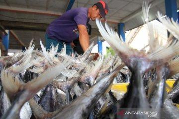 Harga ikan jelang tradisi meugang
