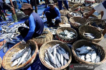 Tangkapan nelayan minim