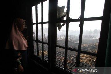 Kebakaran Lahan Gambut Mengenai Rumah Warga