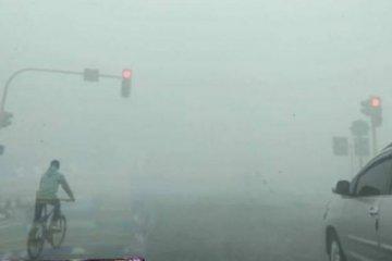 Kabut Asap di Paser Makin Menebal