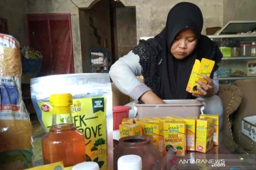 Mangrove dijadikan beragam makanan olahan di tangan warga Indramayu