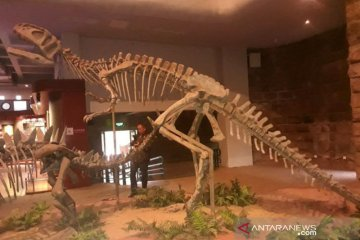 Bekas jejak kaki dinosaurus 100 juta tahun ditemukan lagi di China