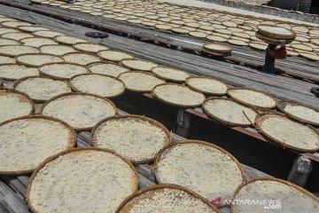 Produksi Tepung Aren Tradisional