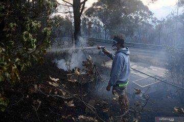 Dua orang tewas dan 100 rumah hancur di Australia