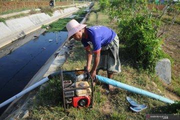 Manfaatkan air limbah rumah tangga