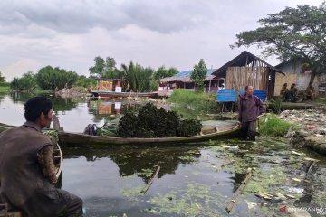 Penjualan ikan di Danau Siombak menurun akibat bangkai babi