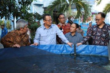 Menteri Edhy Prabowo ajak anak muda terlibat budi daya perikanan