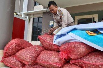 Kiriman ilegal bawang merah terbongkar