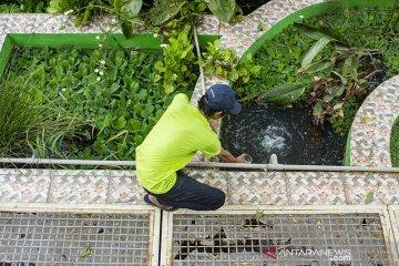 Upaya rehabilitasi sungai konsep Ekoparian
