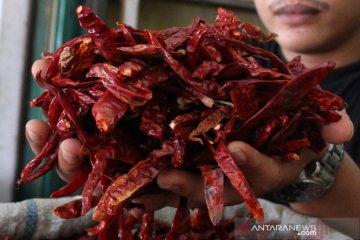 Harga cabai merah kering naik drastis