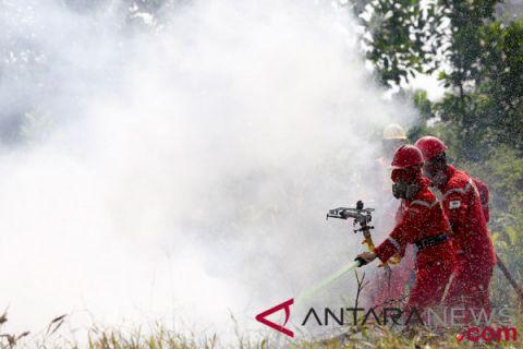 Karhutla di pesisir Riau masih membara